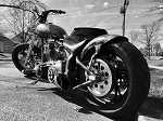 2003 Harley-Davidson SOFTTAIL